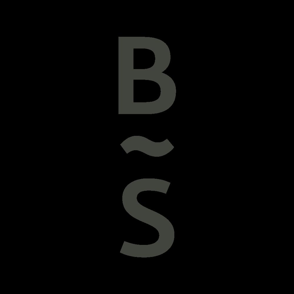 forzastudio_bsusci_branding_11