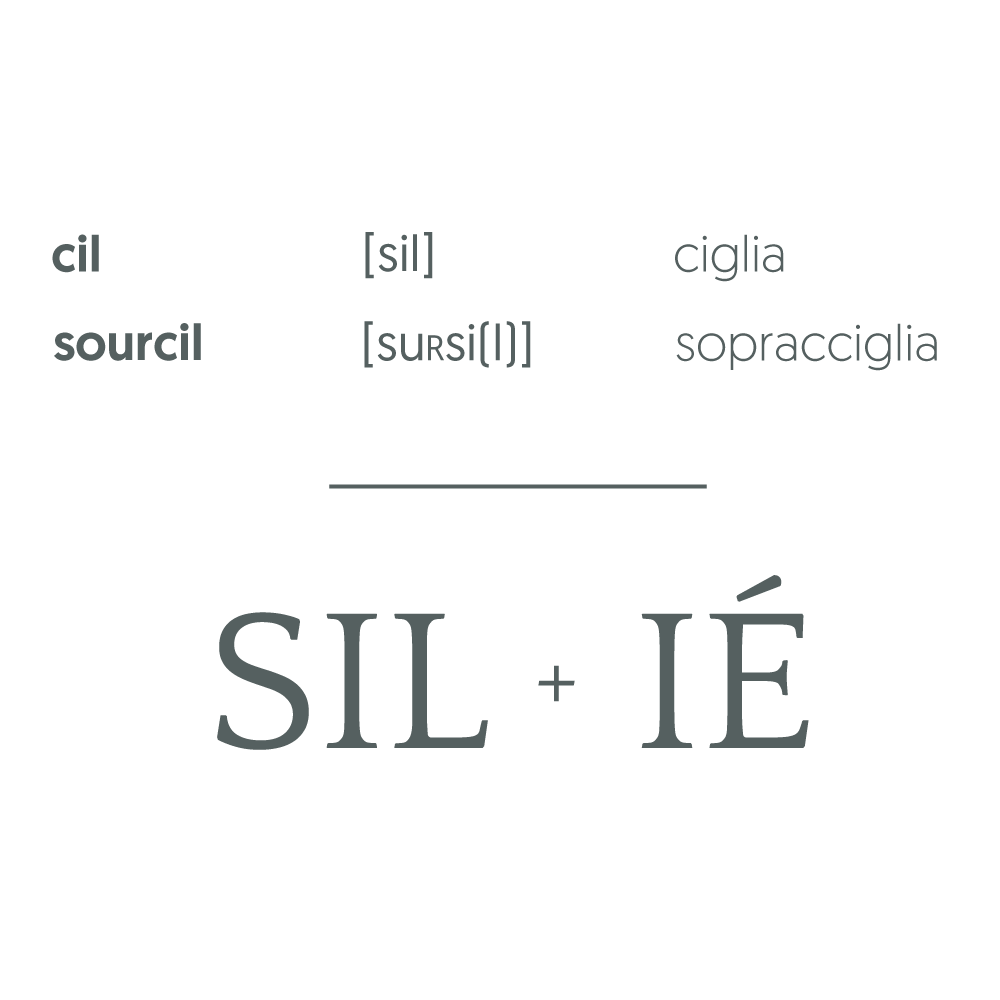 forzastudio_silie_naming_02